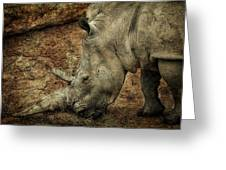 Between A Rock And A Hard Place Greeting Card by Fiona Messenger