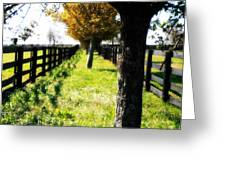 Between Two Farms Greeting Card