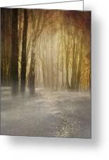 Beware Misty Woodland Path Greeting Card