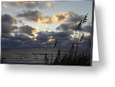 Beyond The Seagrass Greeting Card