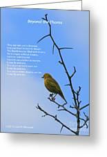 Beyond The Thorns Greeting Card