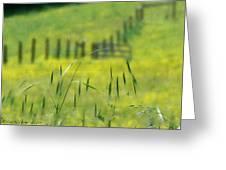 Beyond The Weeds Greeting Card