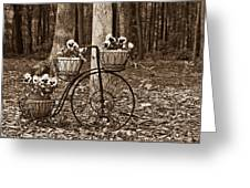 Bicycle Built For Three Greeting Card