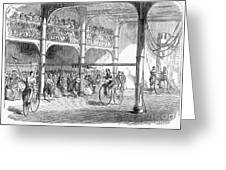 Bicycle Tournament, 1869 Greeting Card