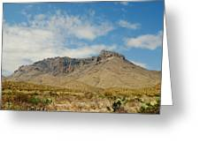 Big Bend Splendor Greeting Card