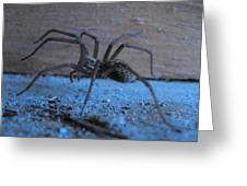 Big Brown Spider Greeting Card