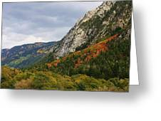 Big Cottonwood Canyon 2 Greeting Card