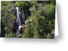 Big Horn National Forest Greeting Card