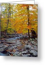 Big Hunting Creek Down Stream From Cunningham Falls Greeting Card