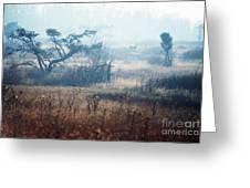 Big Meadows In Winter Greeting Card