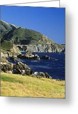 Big-sur-t1-3 Greeting Card by Craig Lovell