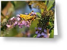 Big Yellow Grasshopper Greeting Card