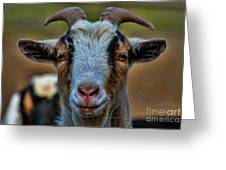 Billy Goat Greeting Card
