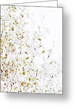 Birch Twigs In Autumn - Multiple Layers Greeting Card