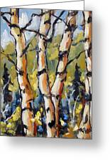 Birches Aglow By Prankearts Greeting Card