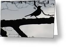 Bird At Dusk Greeting Card