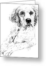 Bird Dog Greeting Card