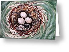Bird Nest And A Feather Greeting Card