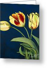 Bird Of Paradise Tulips Greeting Card