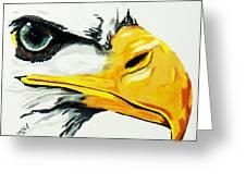 Bird Of Prey  Eagle Greeting Card
