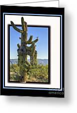 Bird On Cactus Greeting Card