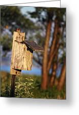 Birdhouse 23 Greeting Card