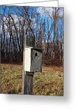 Birdhouse On A Pole Greeting Card