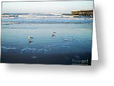 Birds At Dusk Vanilla Pop Greeting Card