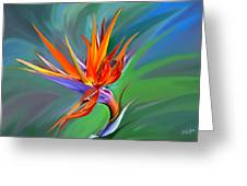 Birds Of Paradise 1 Greeting Card