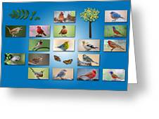 Birds Of The Neighborhood Greeting Card