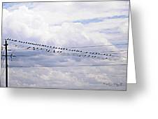 Birds On A Wire Pushed Greeting Card