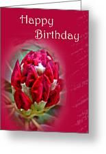 Birthday Card - Red Azalea Buds Greeting Card