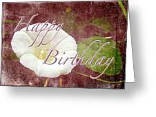 Birthday Greeting Card - Bindweed Morning Glory Greeting Card