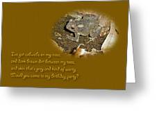 Birthday Party Invitation - Common Toad - Child Greeting Card