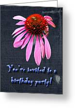 Birthday Party Invitation - Coneflower Greeting Card