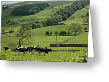 Bishopdale In The Yorkshire Dales National Park Greeting Card by Louise Heusinkveld