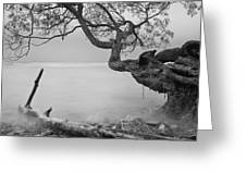 Black And White Mystic Lake Greeting Card
