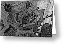 Black And White Rose Sketch Greeting Card