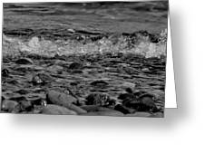 Black And White Shore Greeting Card