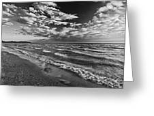 Black And White Shoreline Of Lake Greeting Card