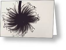 Black And White Twist Greeting Card