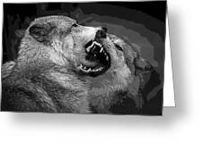Black And White Wolf Fight Greeting Card