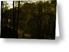 Black Bayou 18 Greeting Card