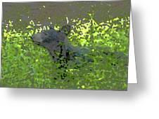 Black Bear In Green Greeting Card