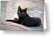 Black Cat On A Persian Rug Greeting Card