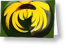 Black Eyed Sphere Greeting Card