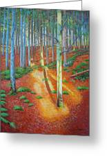 Black Forest Sunset Greeting Card