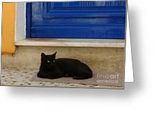 Black Greek Cat Greeting Card