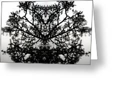 Black Mold Greeting Card