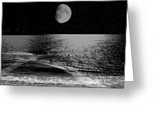 Black Night At The Shore Greeting Card